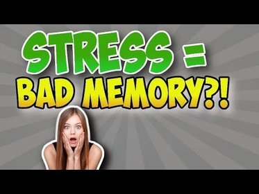 image of: Can Stress Affect Your Memory And Focus? - Why Stress Isn't Always Bad